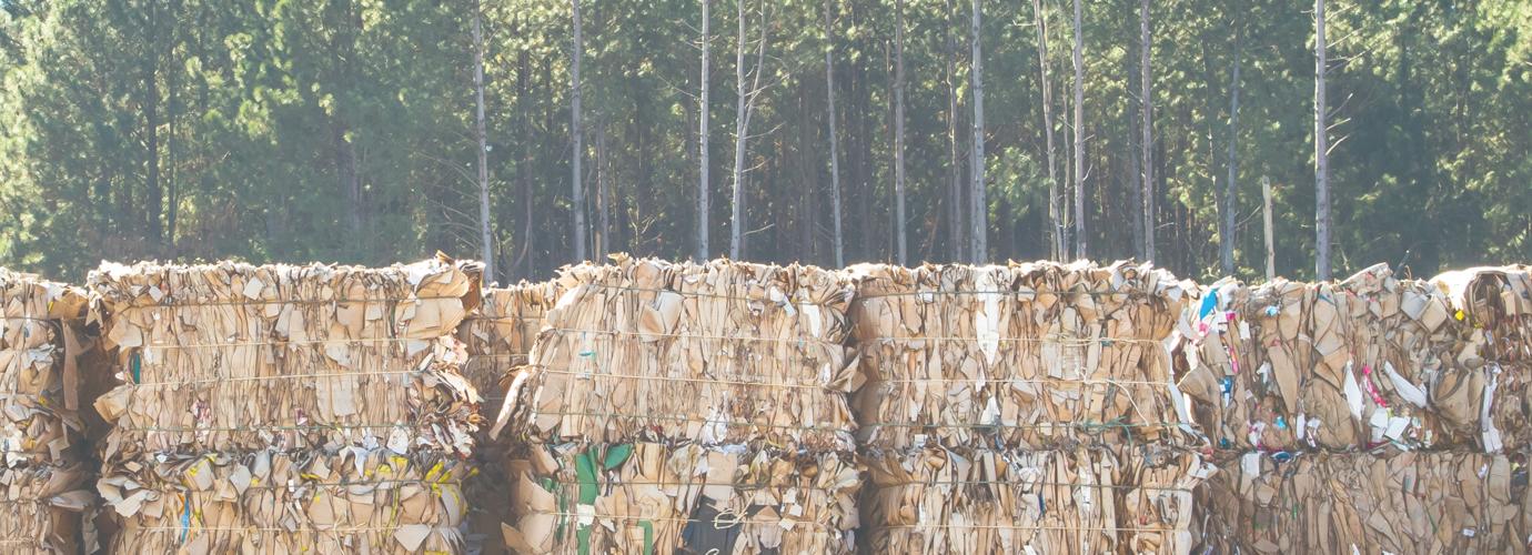 So wird Recyclingpapier hergestellt