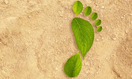 Unser Versprechen an dich und die Umwelt